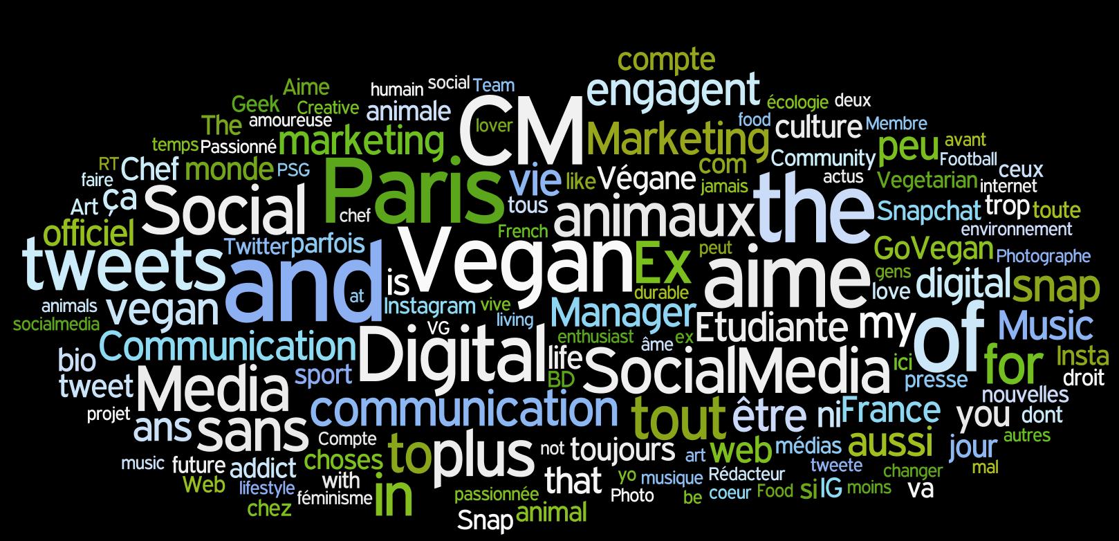 World Cloud PouletQuiTweete profils